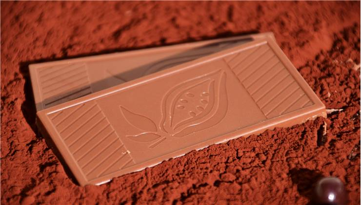 Chocolate Cacao